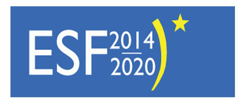 Met ESF-E subsidie 2014-2020 veilig werken volgens de ARBO-wetgeving.